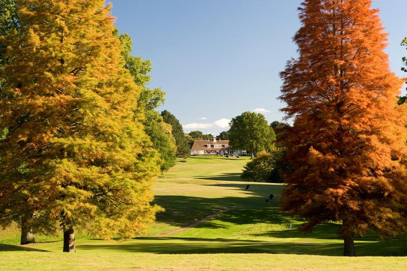 A beautiful golf course in the autumn