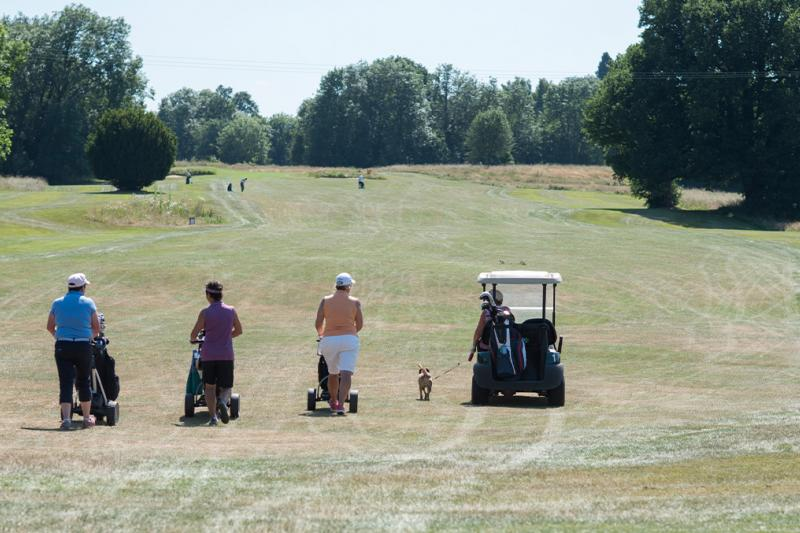 Players following a buggy on a golf course